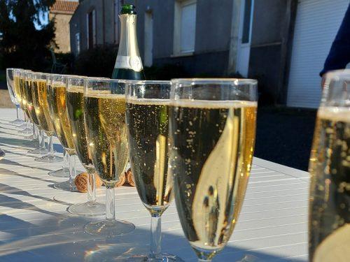 Challenge-des-Sabots-d'or-2020-Blonde-daquitaine-gaec-villeneuve-saint-maurice-etusson-champagne